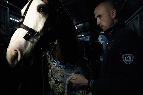 Caballos Del Vino In Colour - Photography project by Paolo Munari Mandelli