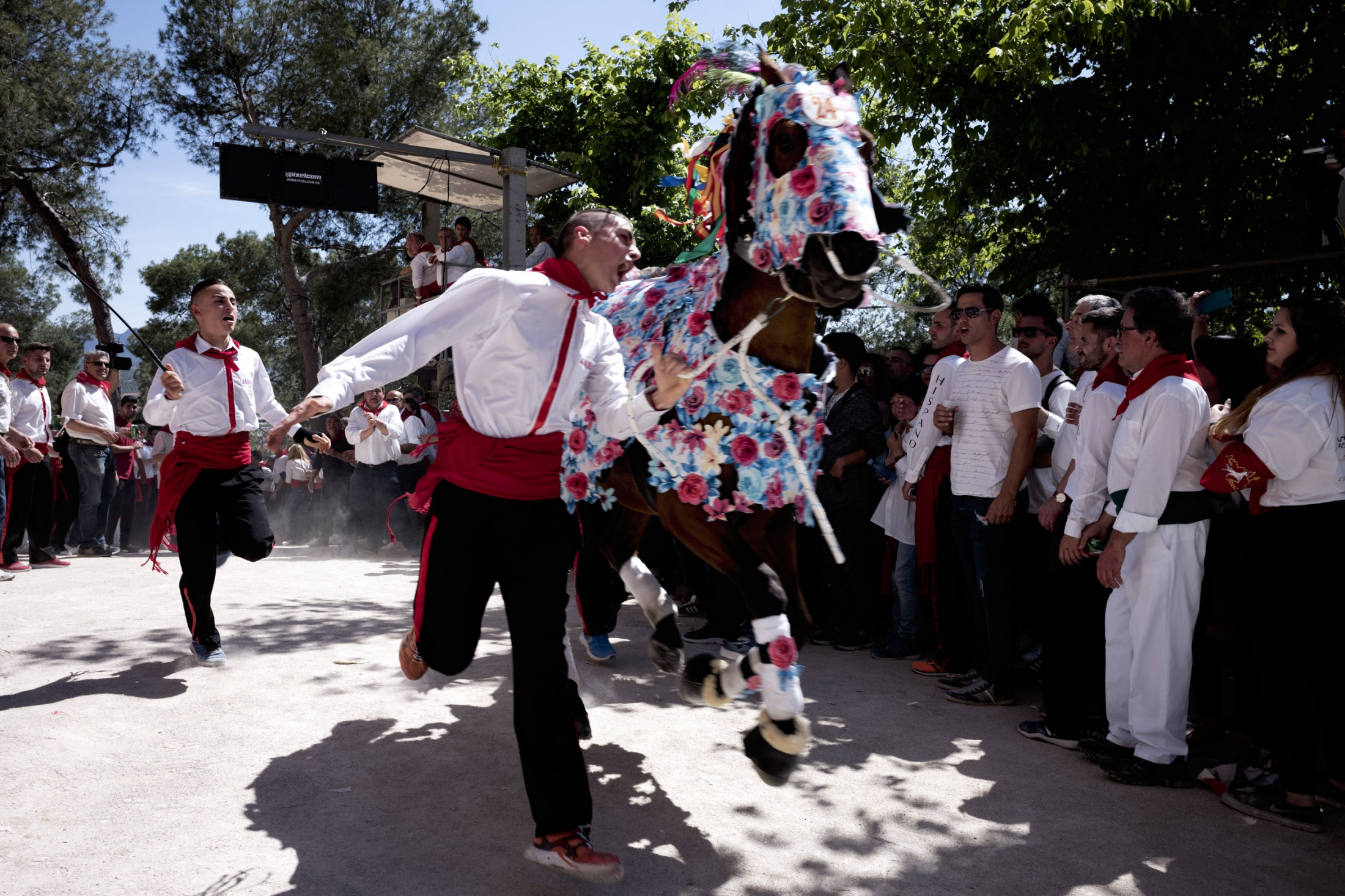 Art and Documentary Photography - Loading Cabalos_Wine-11.jpg