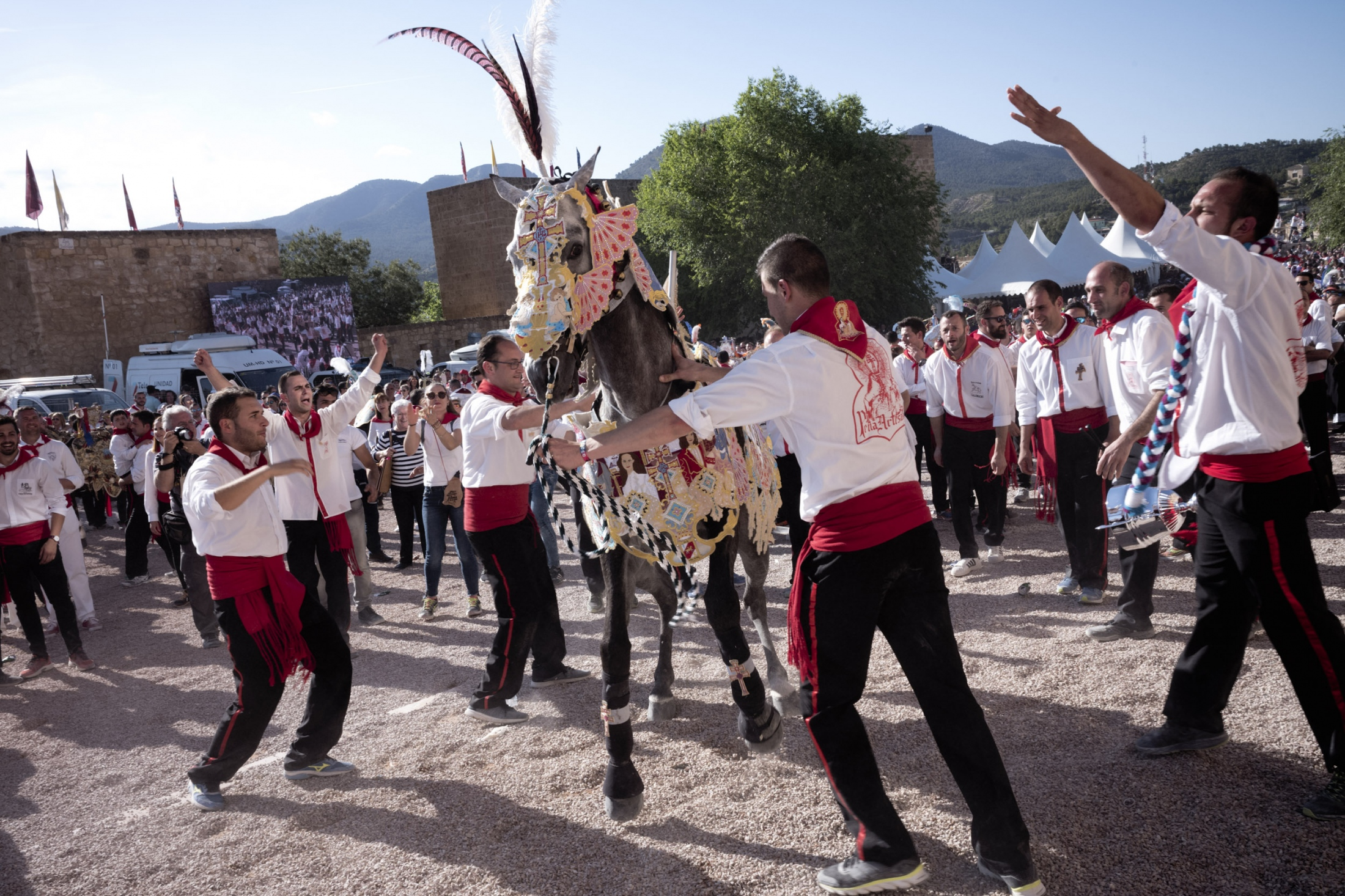 Art and Documentary Photography - Loading Cabalos_Wine-14.jpg