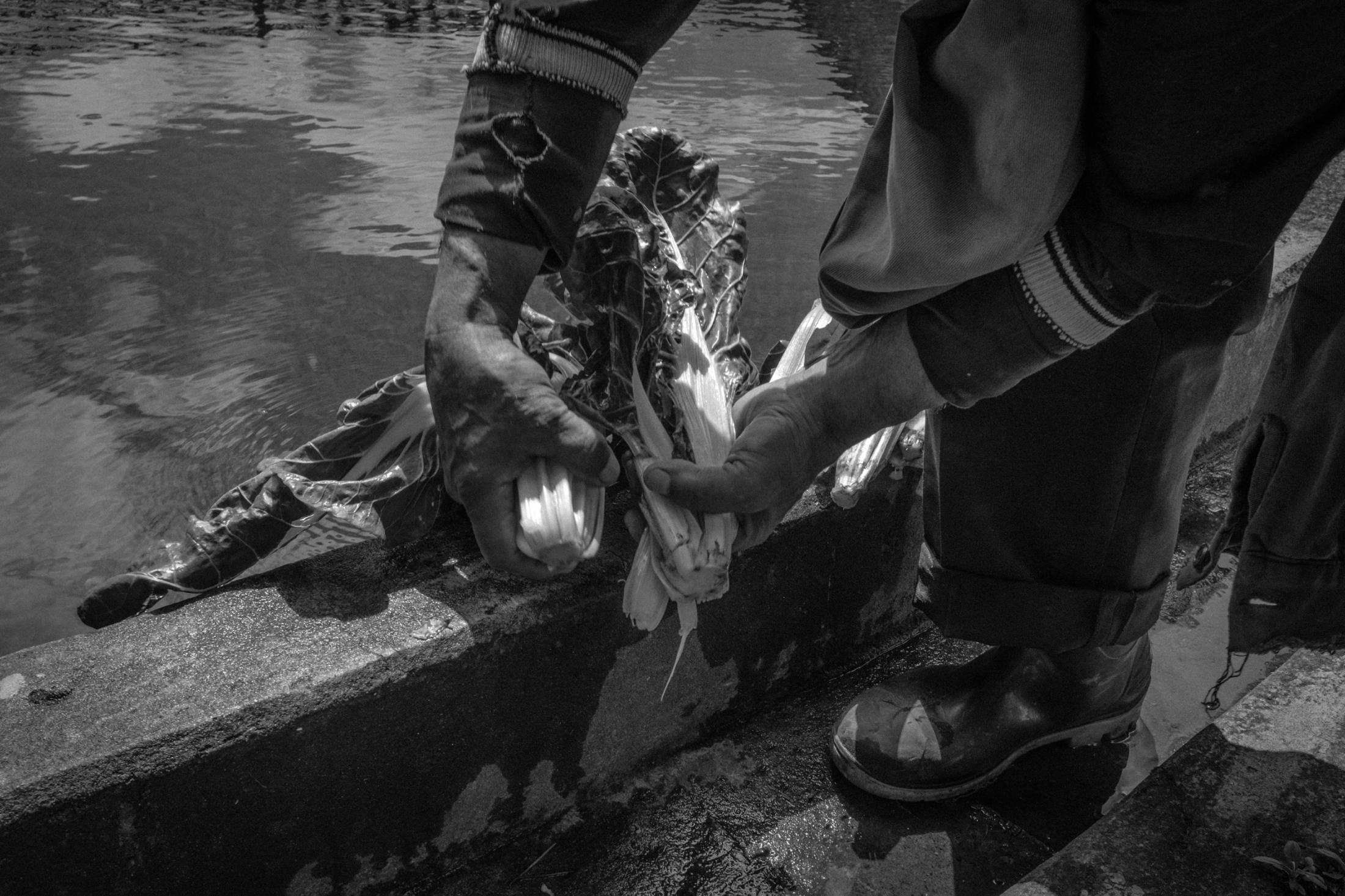 Art and Documentary Photography - Loading ZuletaR__os_CarangasYElJaguar_012.JPG