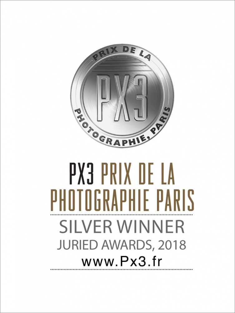 Photography image - Loading PX3-2018-Silver.jpg