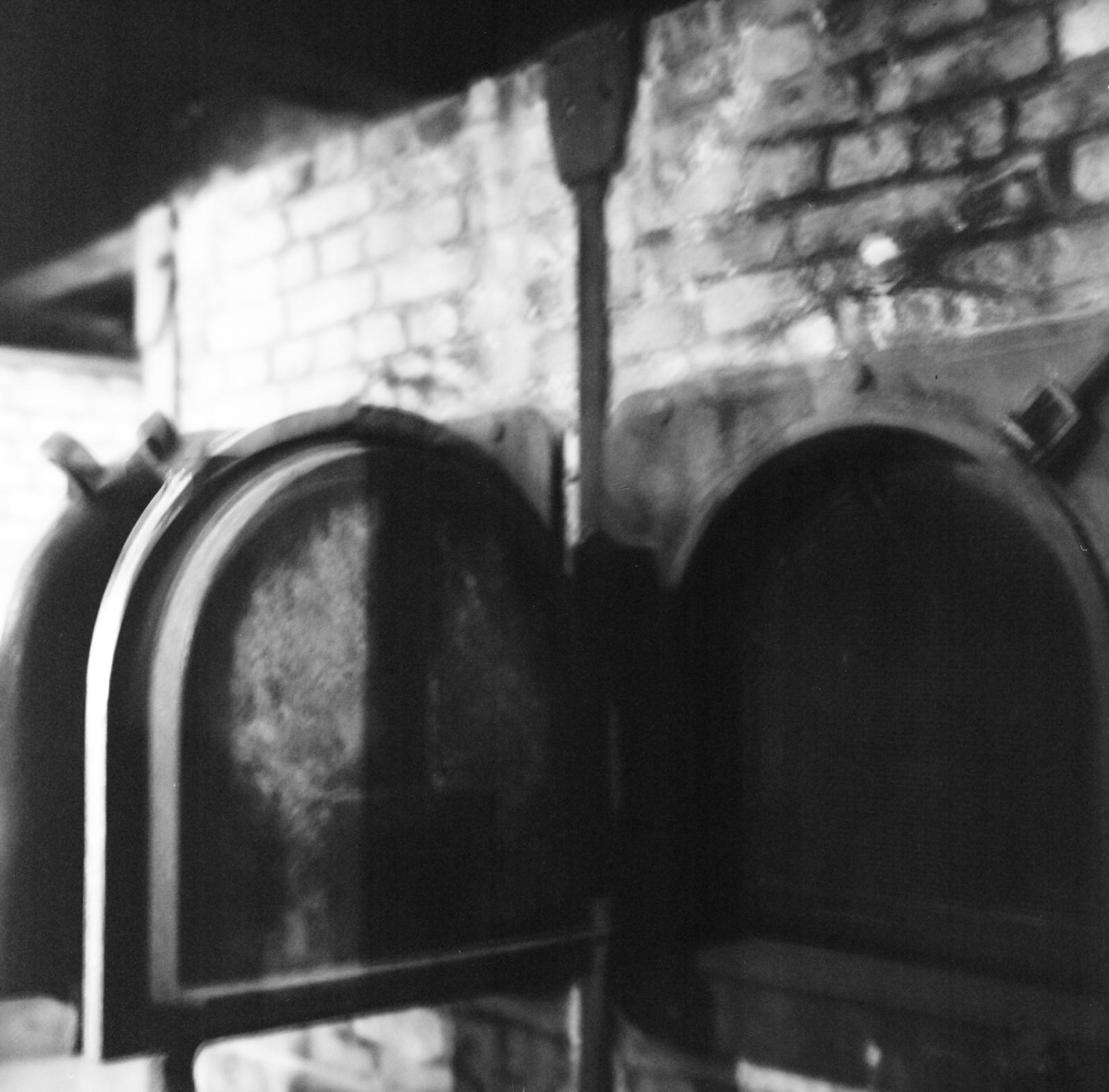 Photography image - Loading Hannah_Kozak-Auschwitz-12-May-2015_December-11_-2016_Hannah_Kozak_Survivor_-01070001.jpg