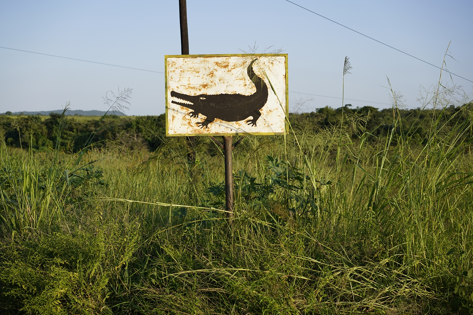 Art and Documentary Photography - Loading RodrigoBC1898.jpg