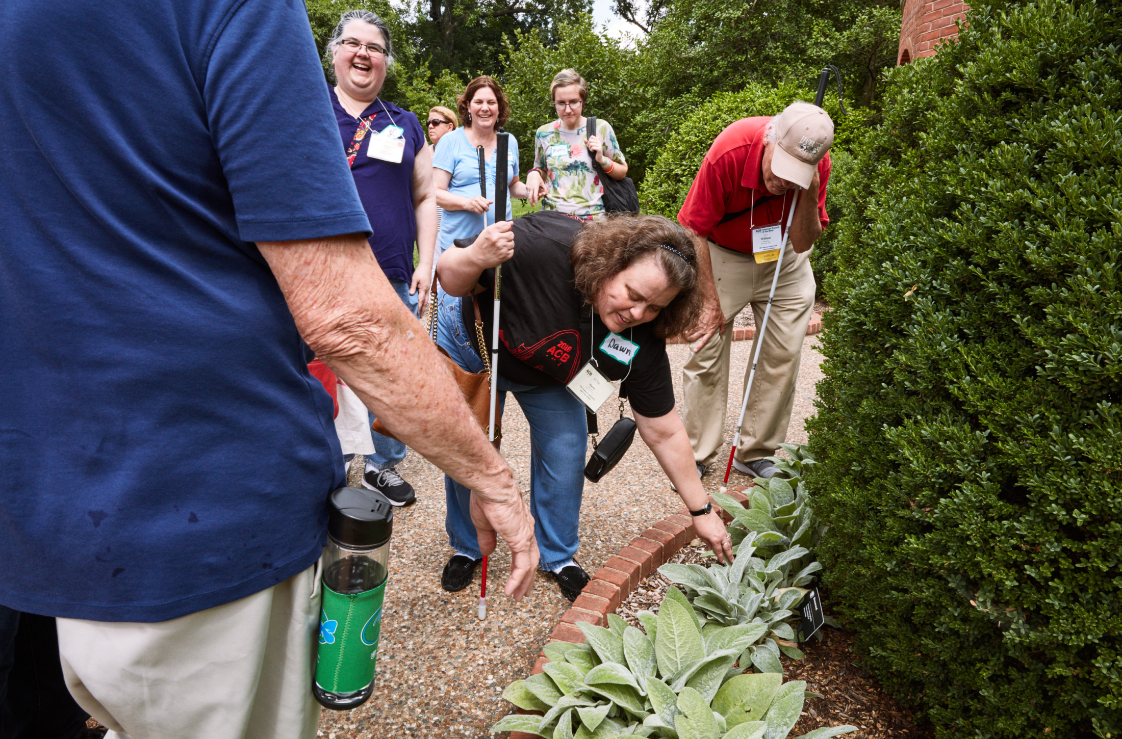 Art and Documentary Photography - Loading 070218_ACBConvention-StLouis_BotanicalGardens_1095.png
