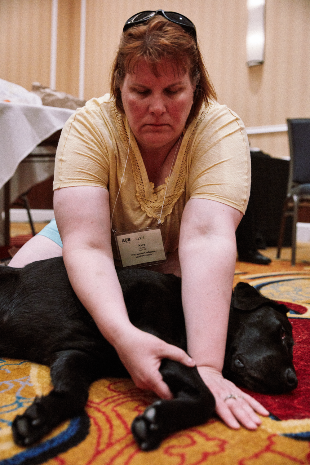 Art and Documentary Photography - Loading 070218_ACBConvention-StLouis_GDUICanineMAssage_1137.png