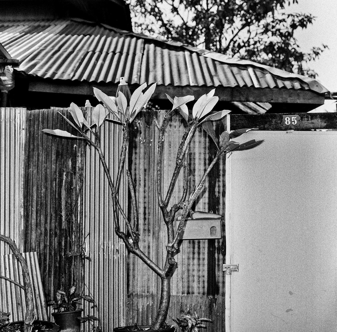 Art and Documentary Photography - Loading Diaconu_07.jpg