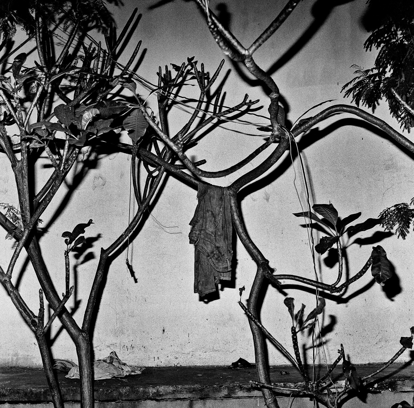 Art and Documentary Photography - Loading Diaconu_15.jpg