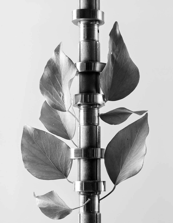 Metal Tree / Árbol Metálico