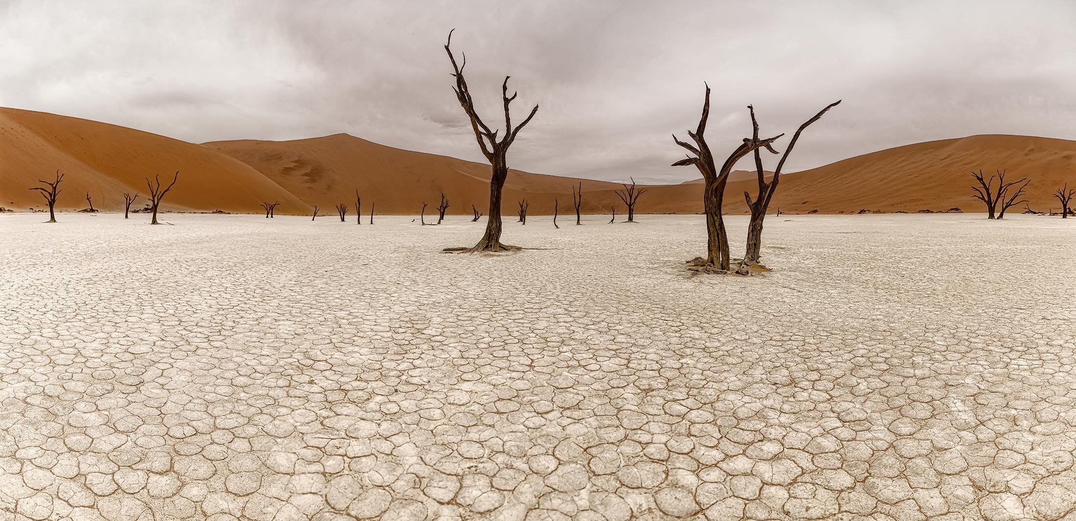 Dead Vlei. (Namibia)