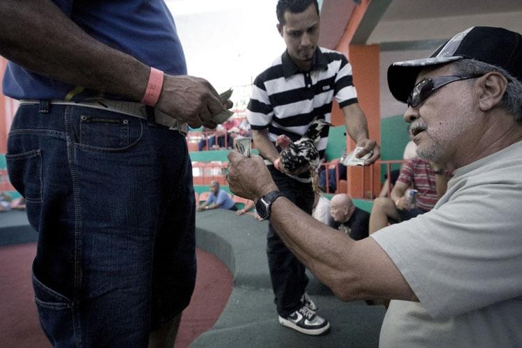 Art and Documentary Photography - Loading 26.jpg