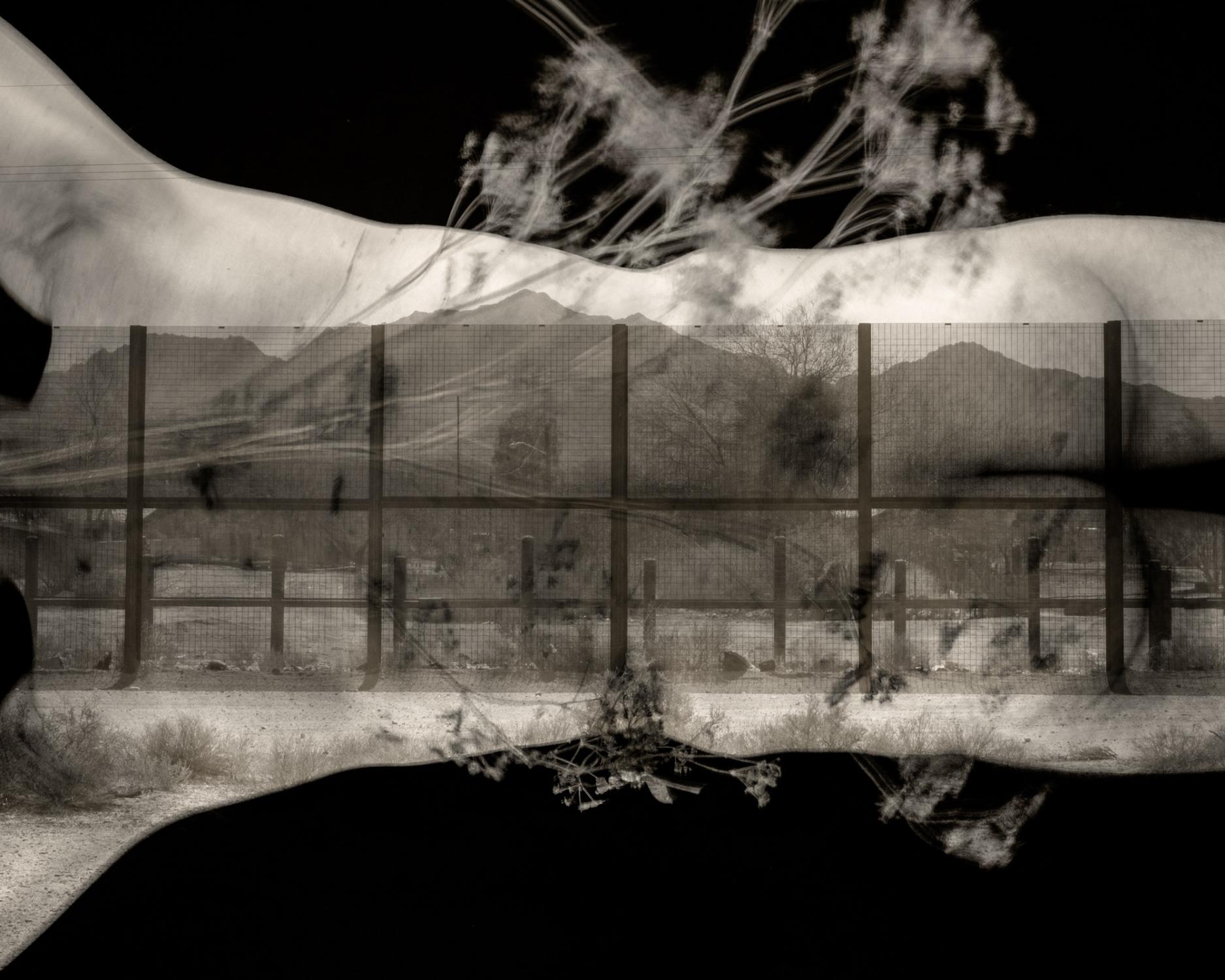 Art and Documentary Photography - Loading _DSC8498-Edit.jpg