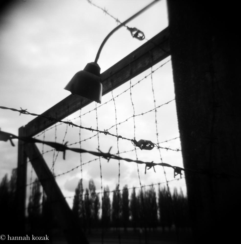 Photography image - Loading Hannah_Kozak_Dachau-2017-May-_November-13_-2017_01170005.jpg