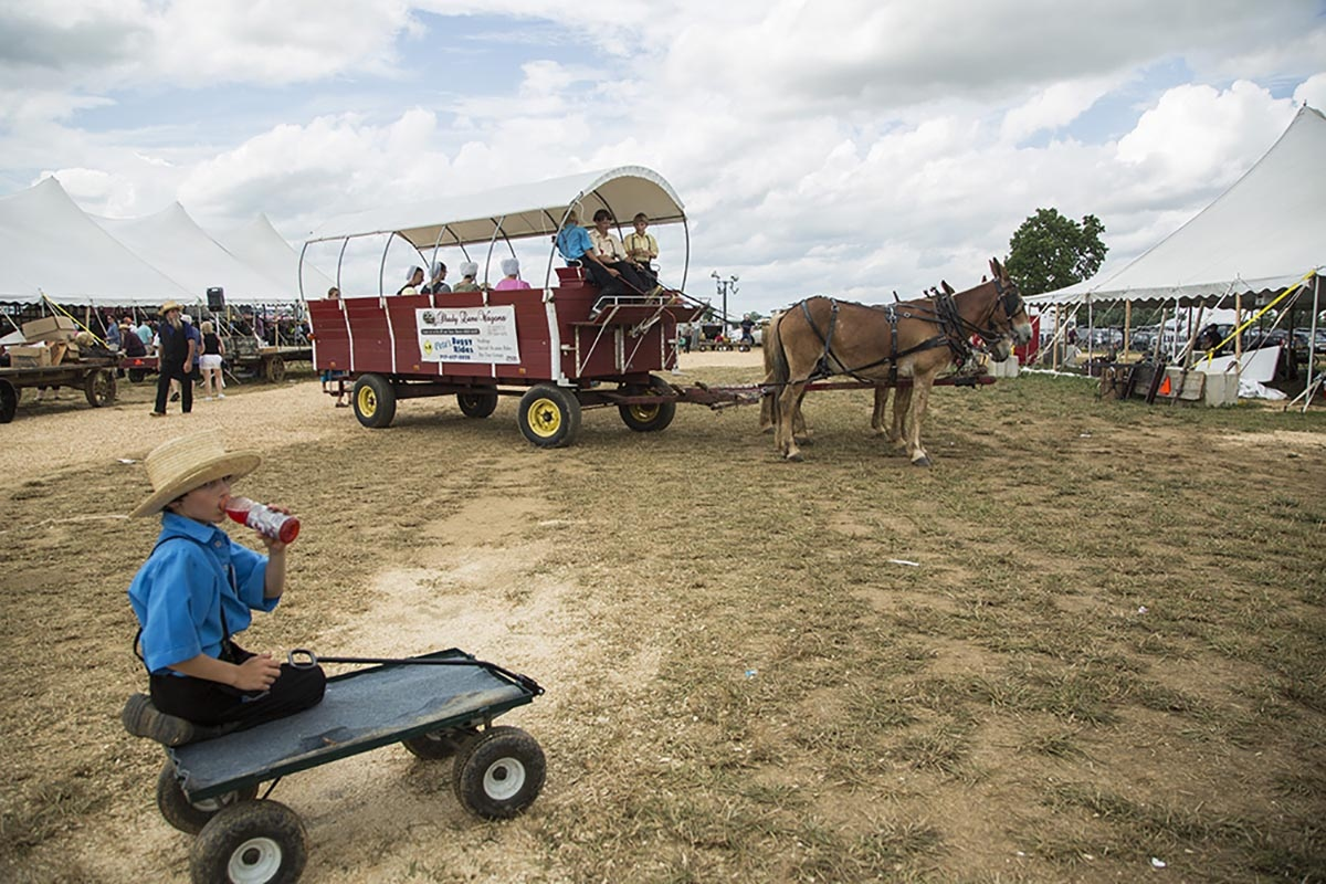 Amish present buggies at annual Lancaster County auction. The earnings will go to Bird-in-Hand firefighters. Like a citizenship solidarity fund.