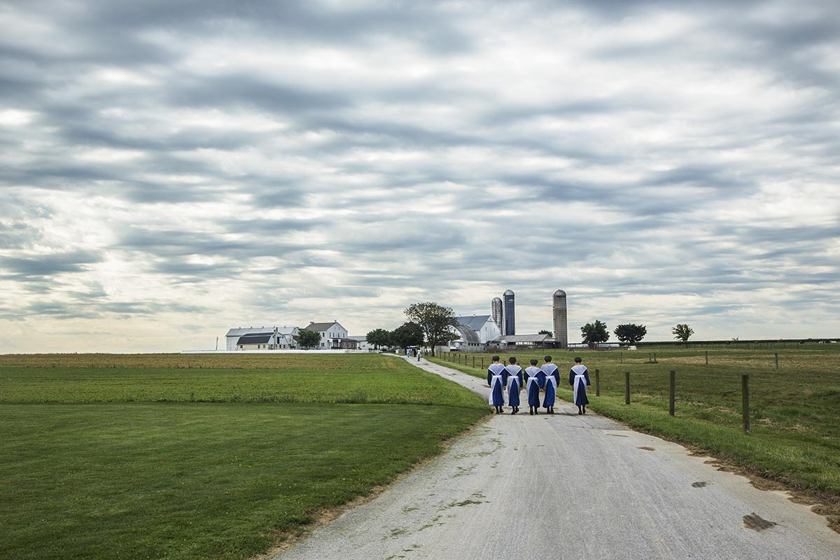 Dressed in white, these girls go, in close rank, to the worship celebrated every second Sunday. Here in an Amish farm near Strasburg.