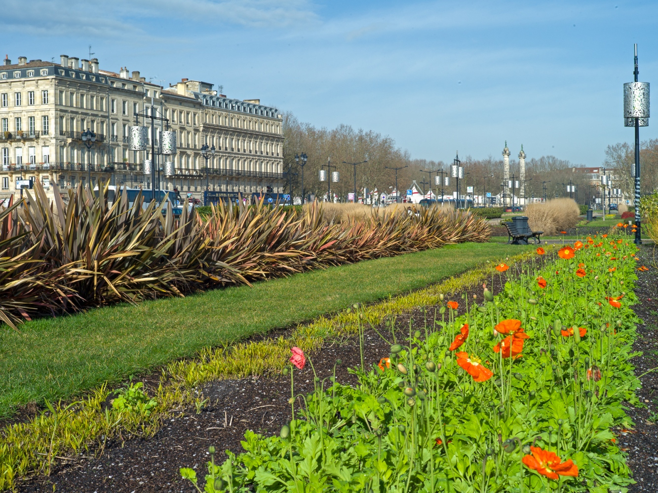 Photography image - Loading Winter_Poppies_of_Bordeaux.jpg