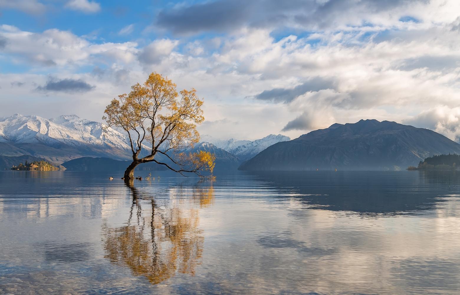 Lago Wanaka. (New Zealand)