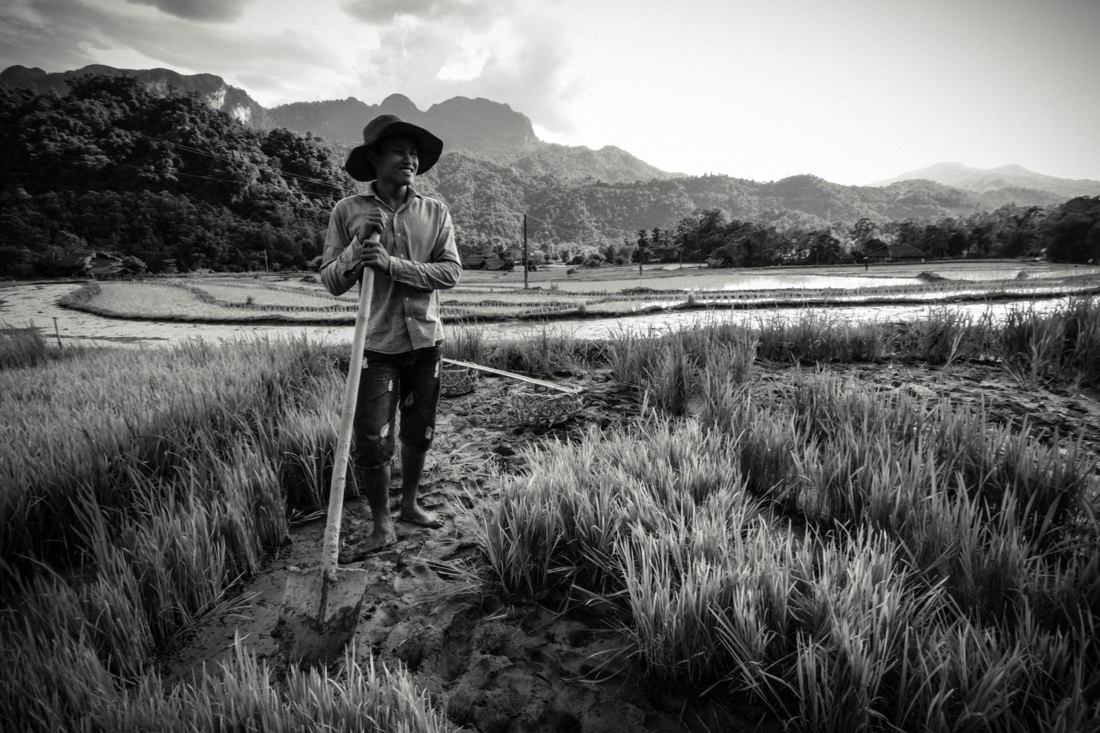 <p>Field Worker, Yen Dinh, Vietnam</p>