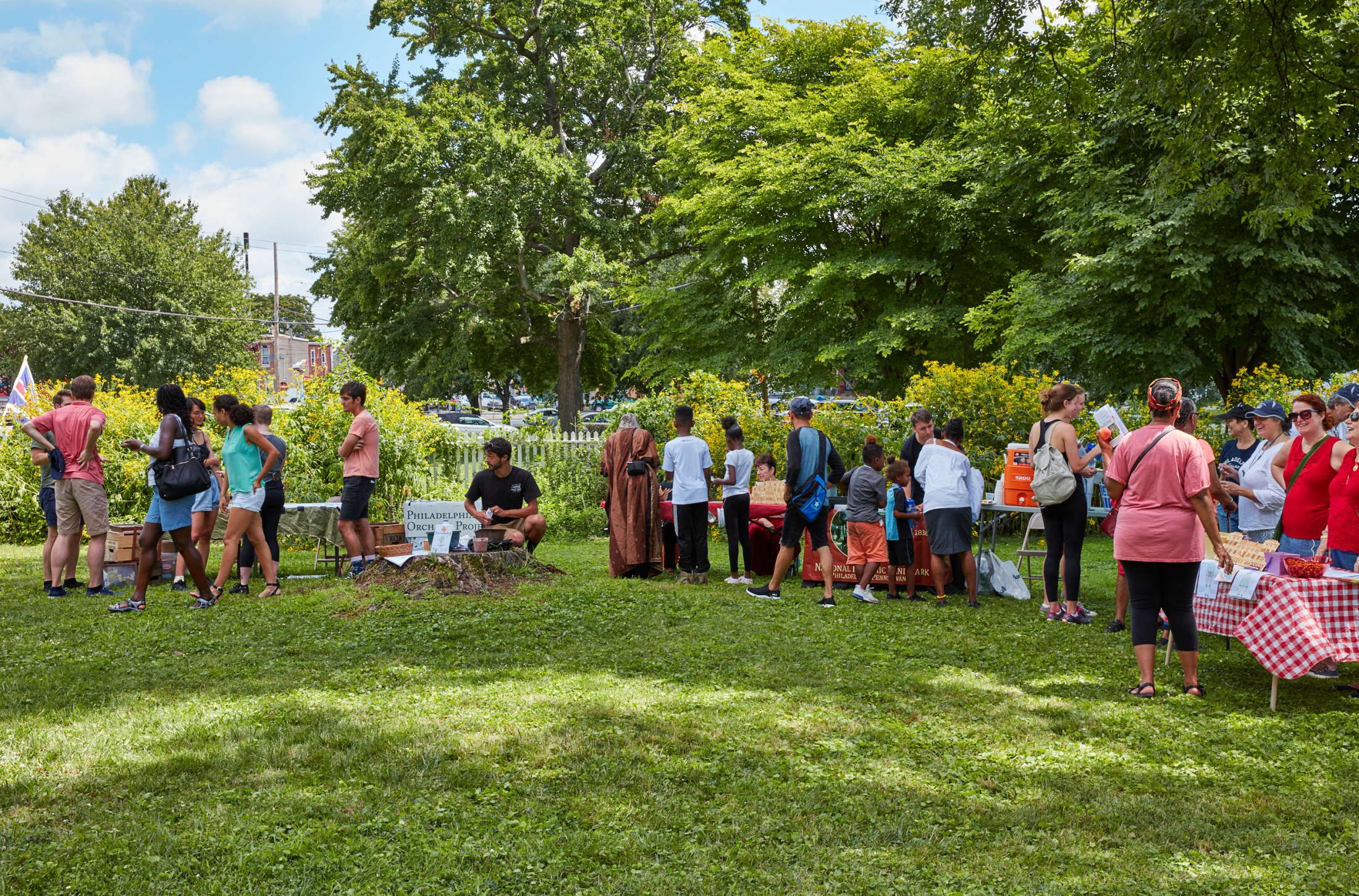 Art and Documentary Photography - Loading 04-08-18_WoodfordMansion-PeachFestival_258.png