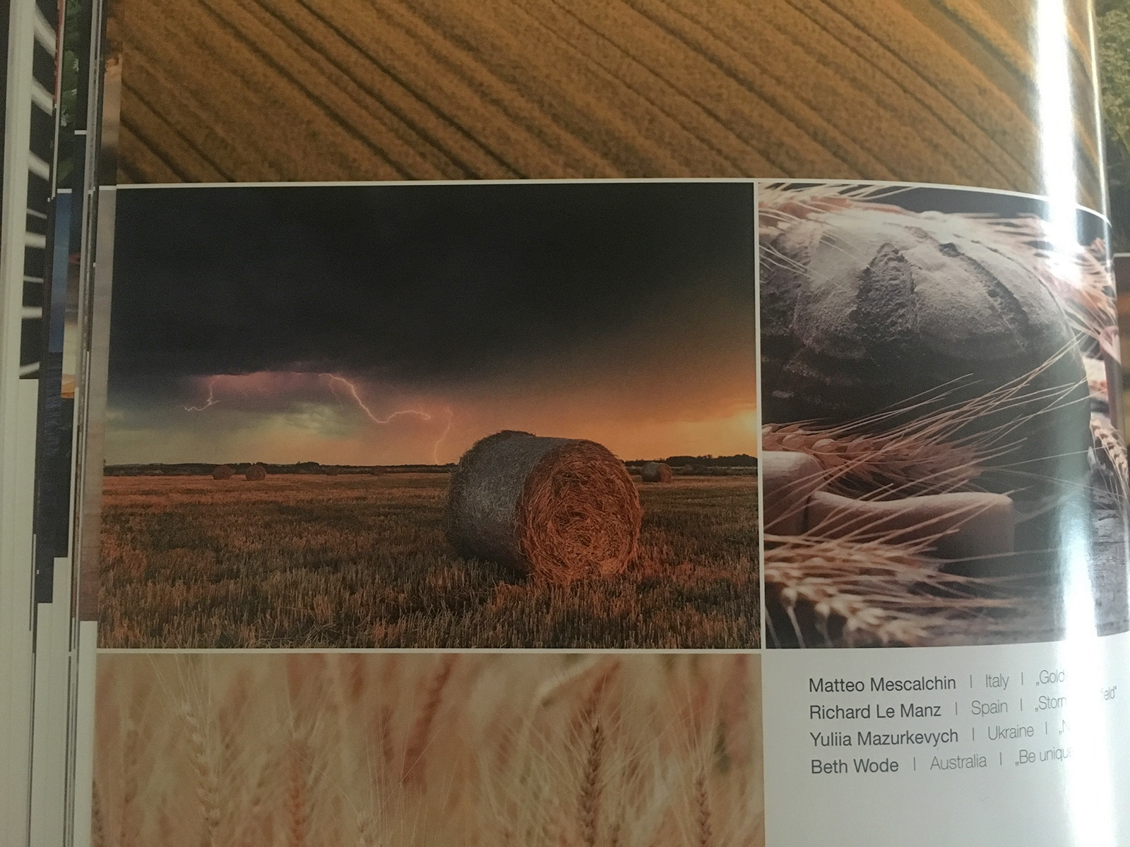 Art and Documentary Photography - Loading IMG_5237-trierenberg.jpg