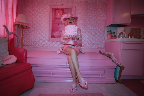 Kitten Kay Sera sitting on her pink coffin in her kitchen.