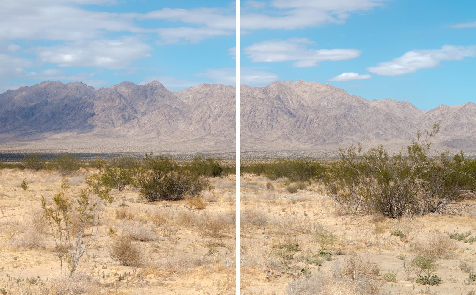Art and Documentary Photography - Loading 2xcreosotelandscape-2.jpg