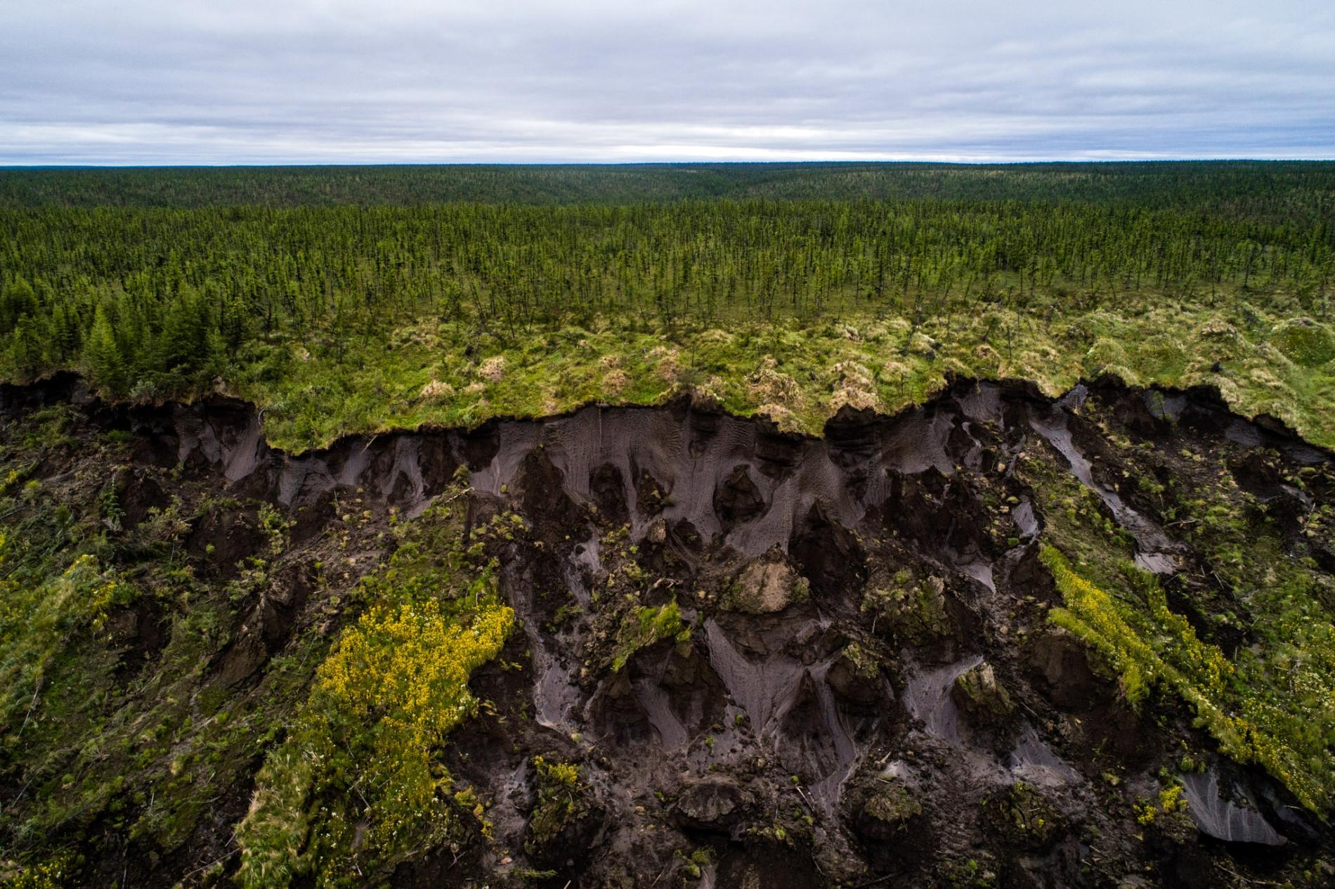Art and Documentary Photography - Loading 01_permafrost_pleistocene-chersky-246.adapt.1900.1.jpg