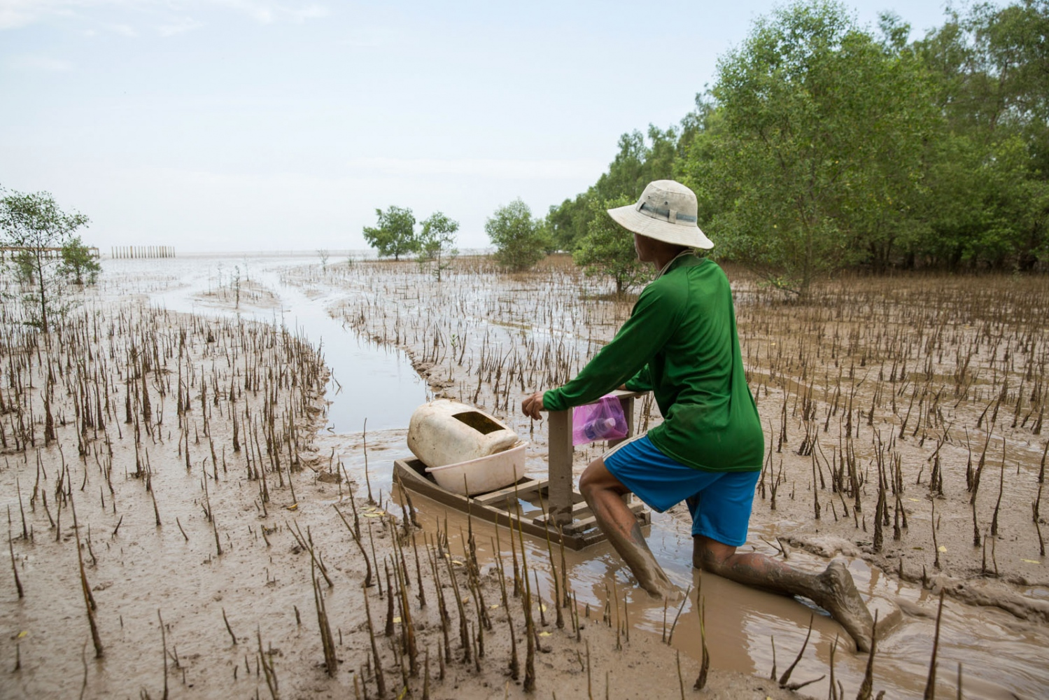 A man called Ly Tinh, 39, from the ethnic Khmer community uses a wooden 'sleigh', or 'mong' in local dialect, to glide over the deep mud remaining in this mangrove forest once the tide has retreated. The fishermen have used this method for over 60 years to reach their fishing nets out at sea.