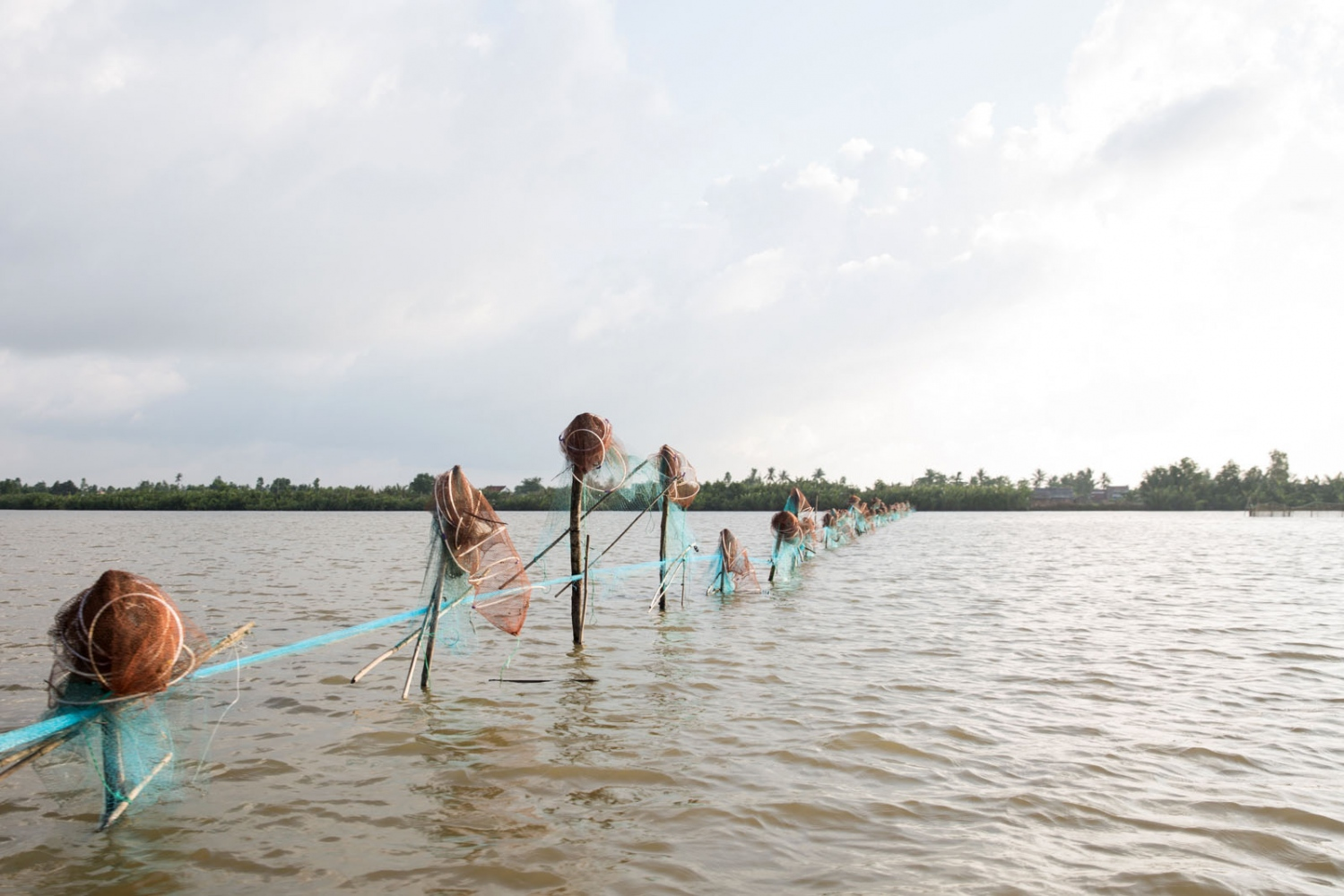 Fishing nets cut across the middle of Thi Tuong Lagoon in Ca Mau Province. 2km wide and over 10km long it is the largest natural lagoon in the Delta and an important for the many fishermen who rely on it.