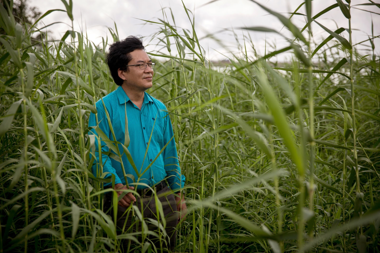 Freelance Ecologist Nguyen Huu Thien who was involved in the Mekong River Commission stands on a grassy island located in the middle of rivers surrounding Can Tho city.