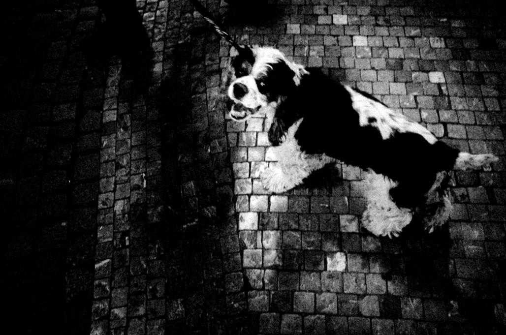 Art and Documentary Photography - Loading Eschaton_Matthias_Koch-4.jpg