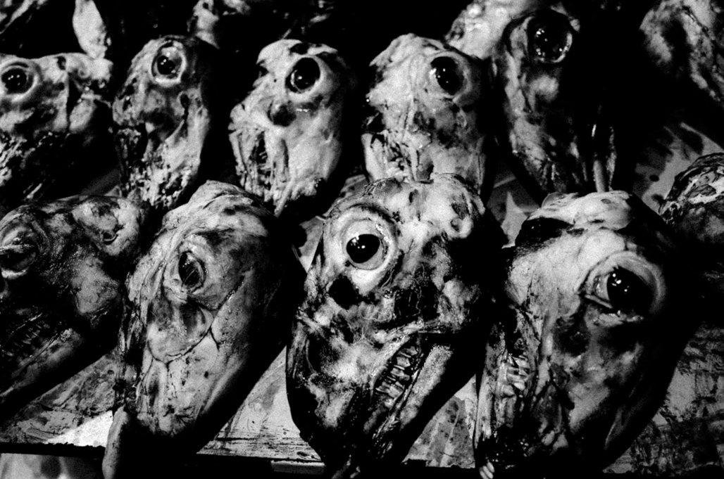 Art and Documentary Photography - Loading Eschaton_Matthias_Koch-6.jpg