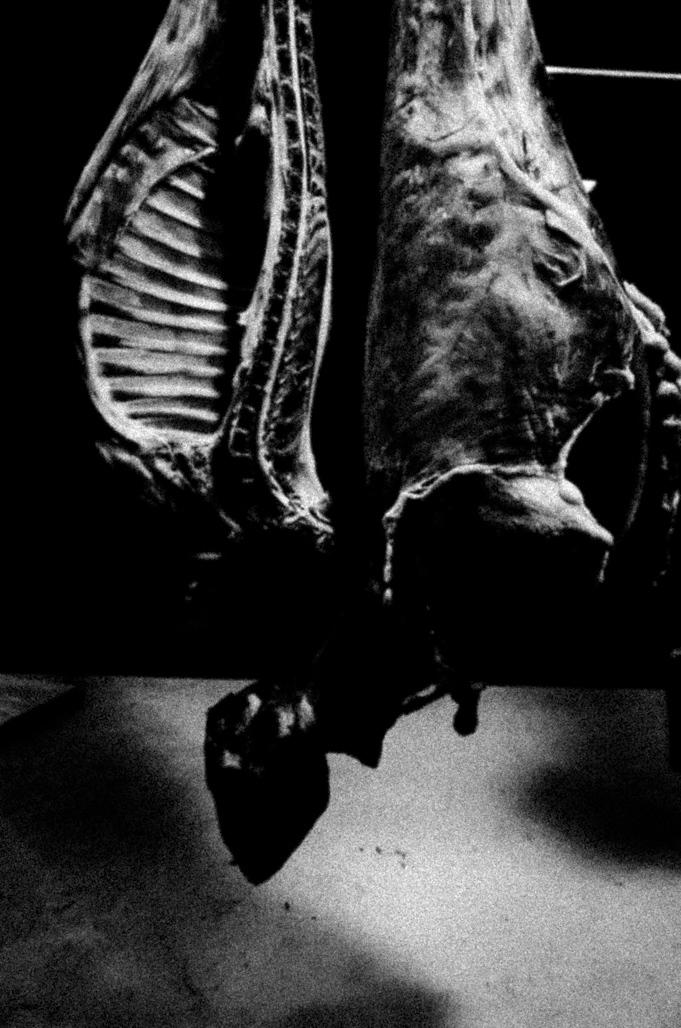 Art and Documentary Photography - Loading Eschaton_Matthias_Koch-12.jpg