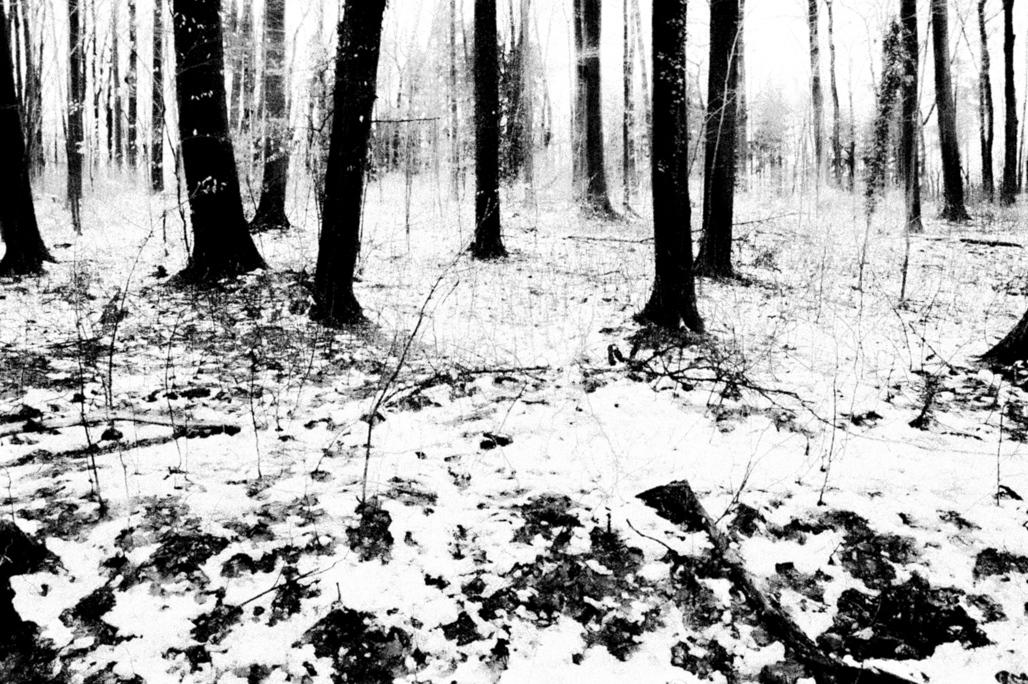 Art and Documentary Photography - Loading Eschaton_Matthias_Koch-25.jpg