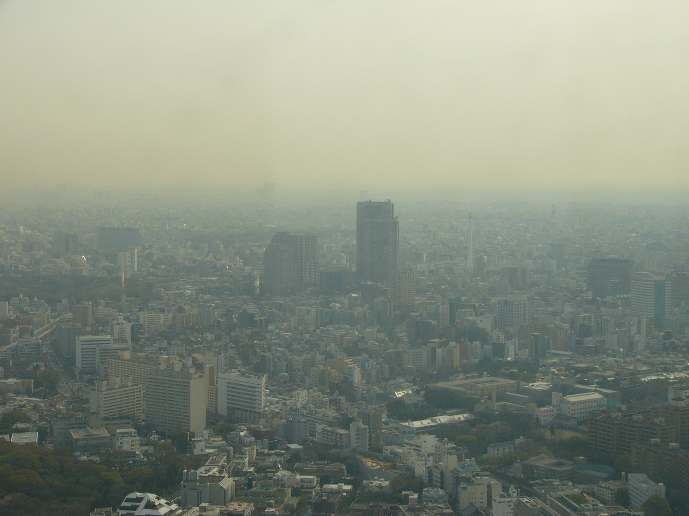 Tokyo, 2005.
