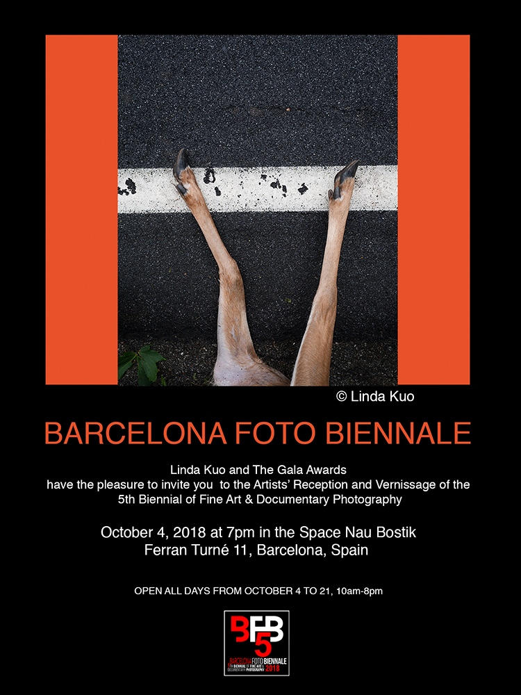 Art and Documentary Photography - Loading Template_Biennial_invitation.jpg