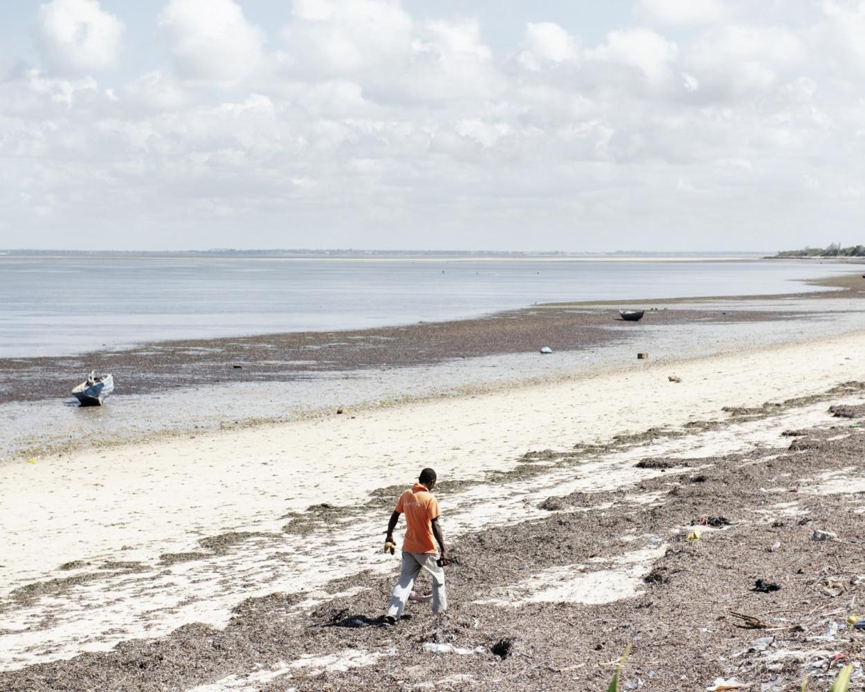 A Sea Cucumber trader walks on the beach near Ilha de Mozambique.