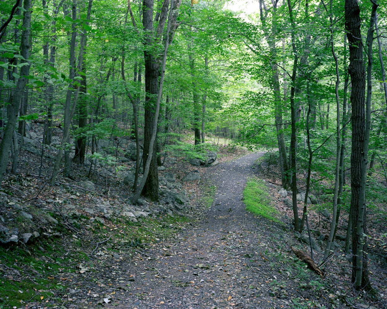 Photography image - Loading 2-New-Jersey-Trails.jpg