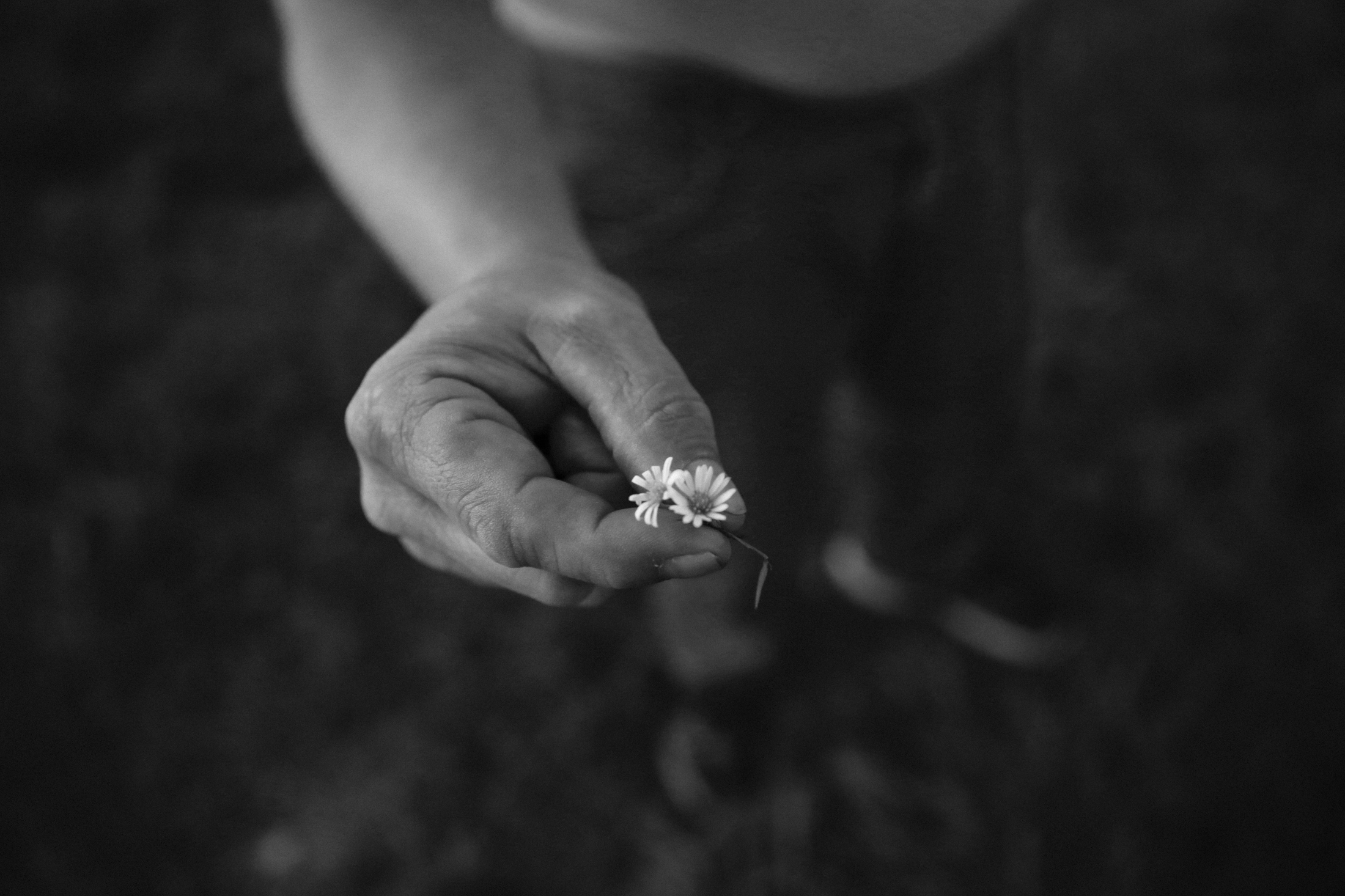 Anthony picks a wildflower for Dawn at a field near the motel. For Anthony, two decades of getting high on meth cost him his happiness. He was expelled from high school, lost his home, family and friends and spent four years of his life in prison.