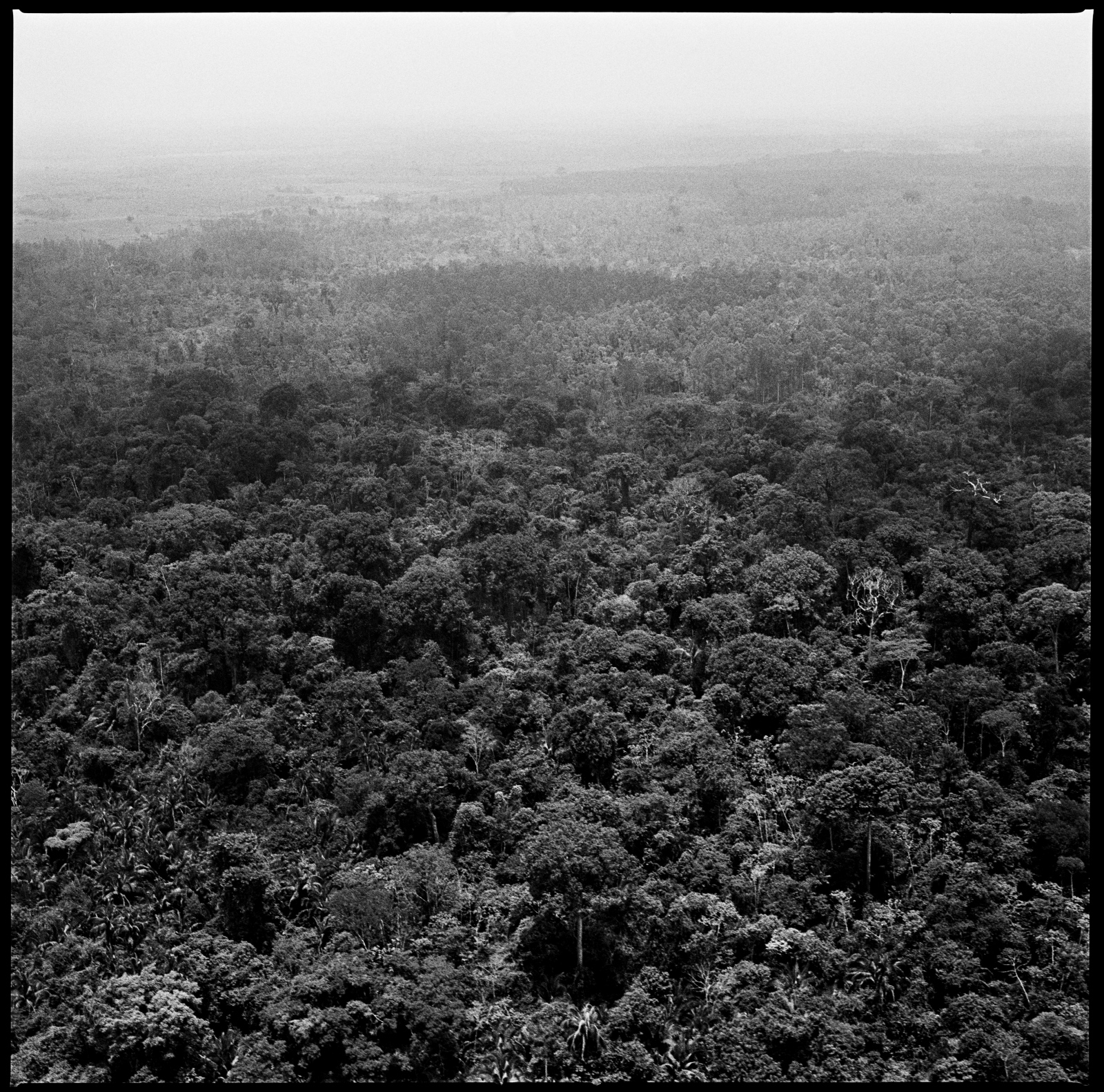 An aerial view from the amazon jungle in the Araguaia region between the states of Para and Tocantins in Brazil. This region in the late 1960's and early 70's was taken by a communist guerrilla movement which was later exterminated by the Brazilian army during the military dictatorship.    Para, Brazil, October 2012.
