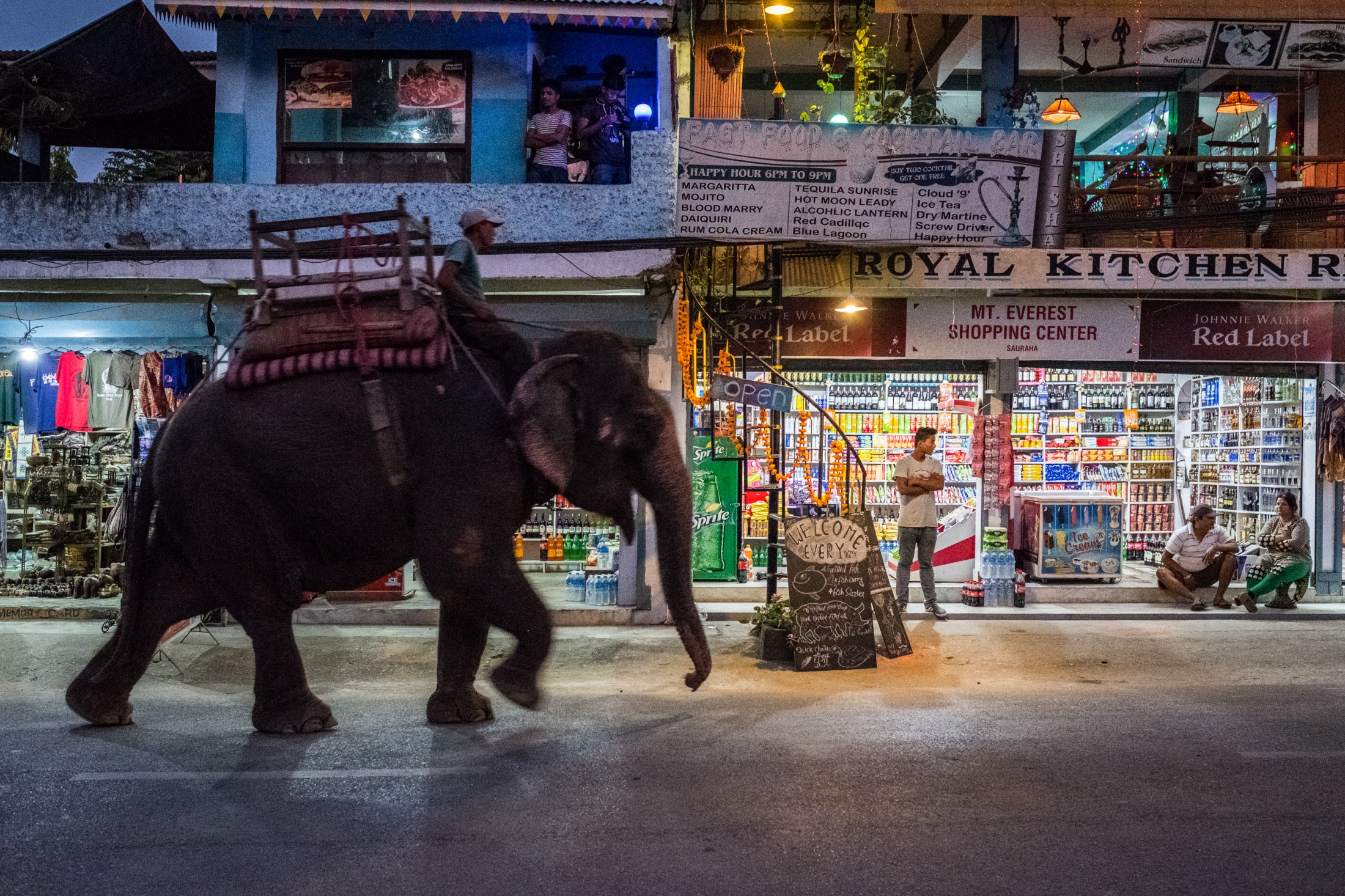 Elephants walking down the main street in Sauraha is commonplace -- and  happens several times a day, everyday. Sauraha's economy is dominated by  tourism ...