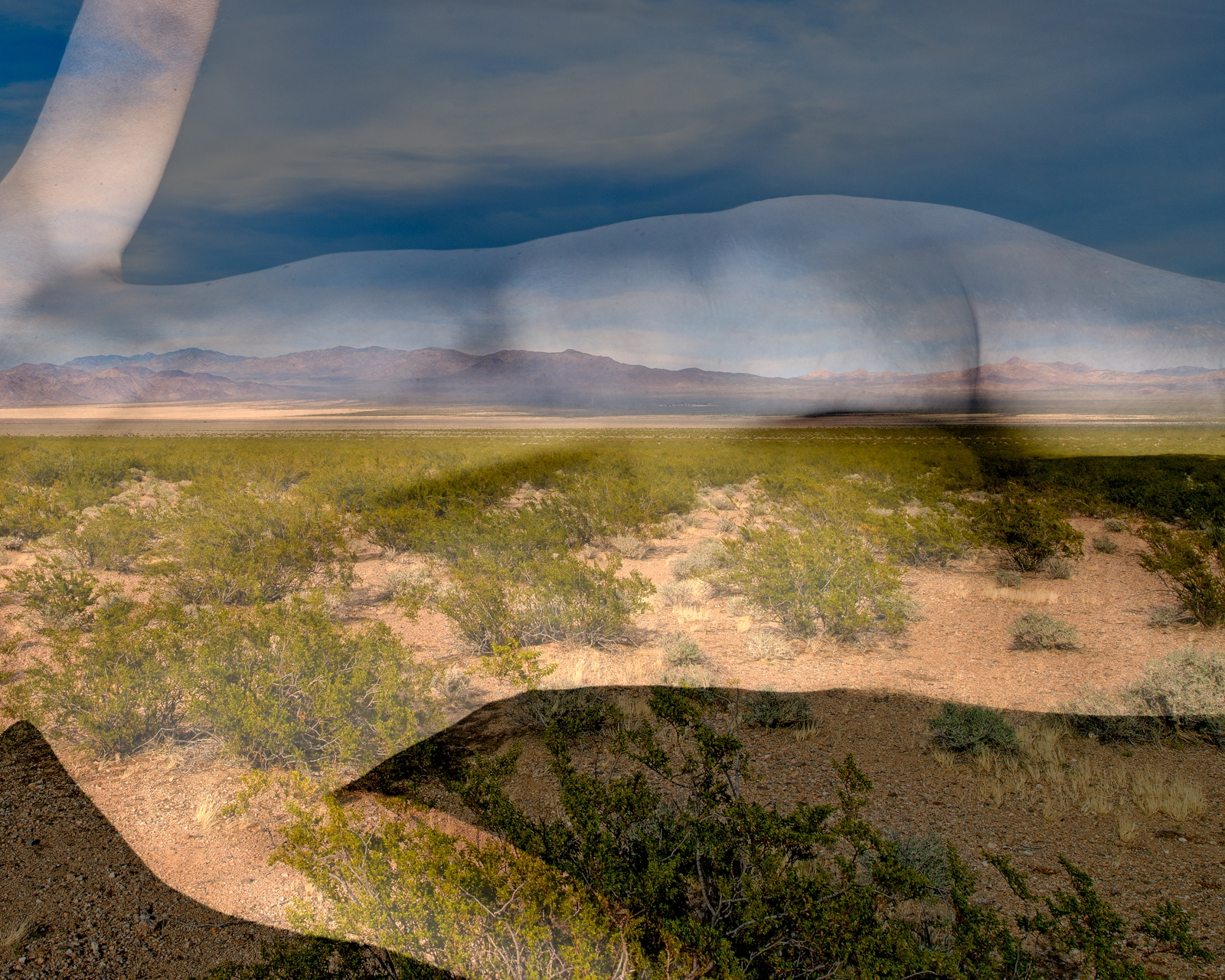 Art and Documentary Photography - Loading _DSC5950-creosote2.jpg