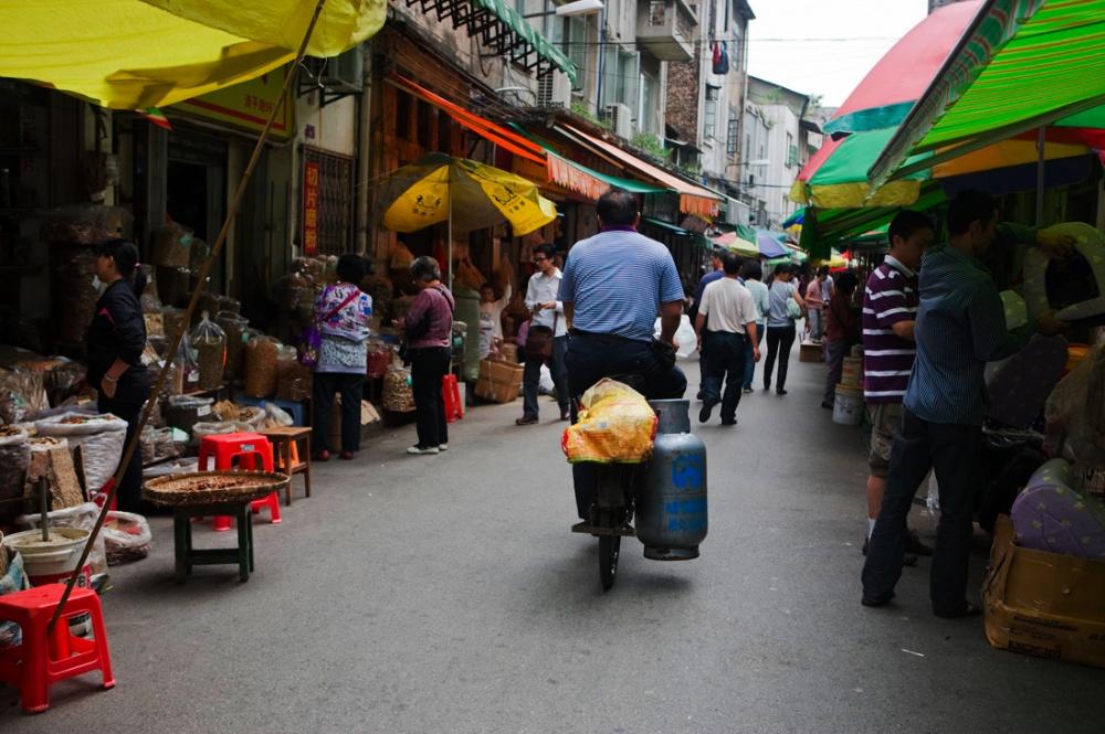 Mercado de Qingping en el que se encuentran todos tipos de animales para consumo humano y mascotas y es el mejor mercado para encontrar medicinas naturales de todo tipo / Qingping Market in which all kinds of animals are found for natural healing, human consumption and as pets. Guangzhou
