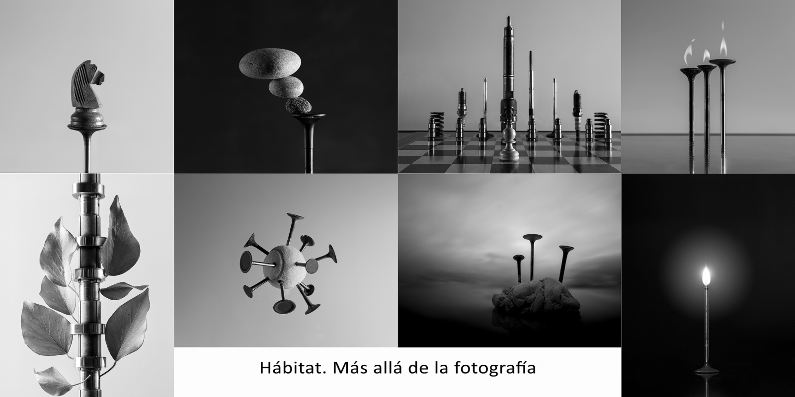 Photography image - Loading Conjunto-web.jpg