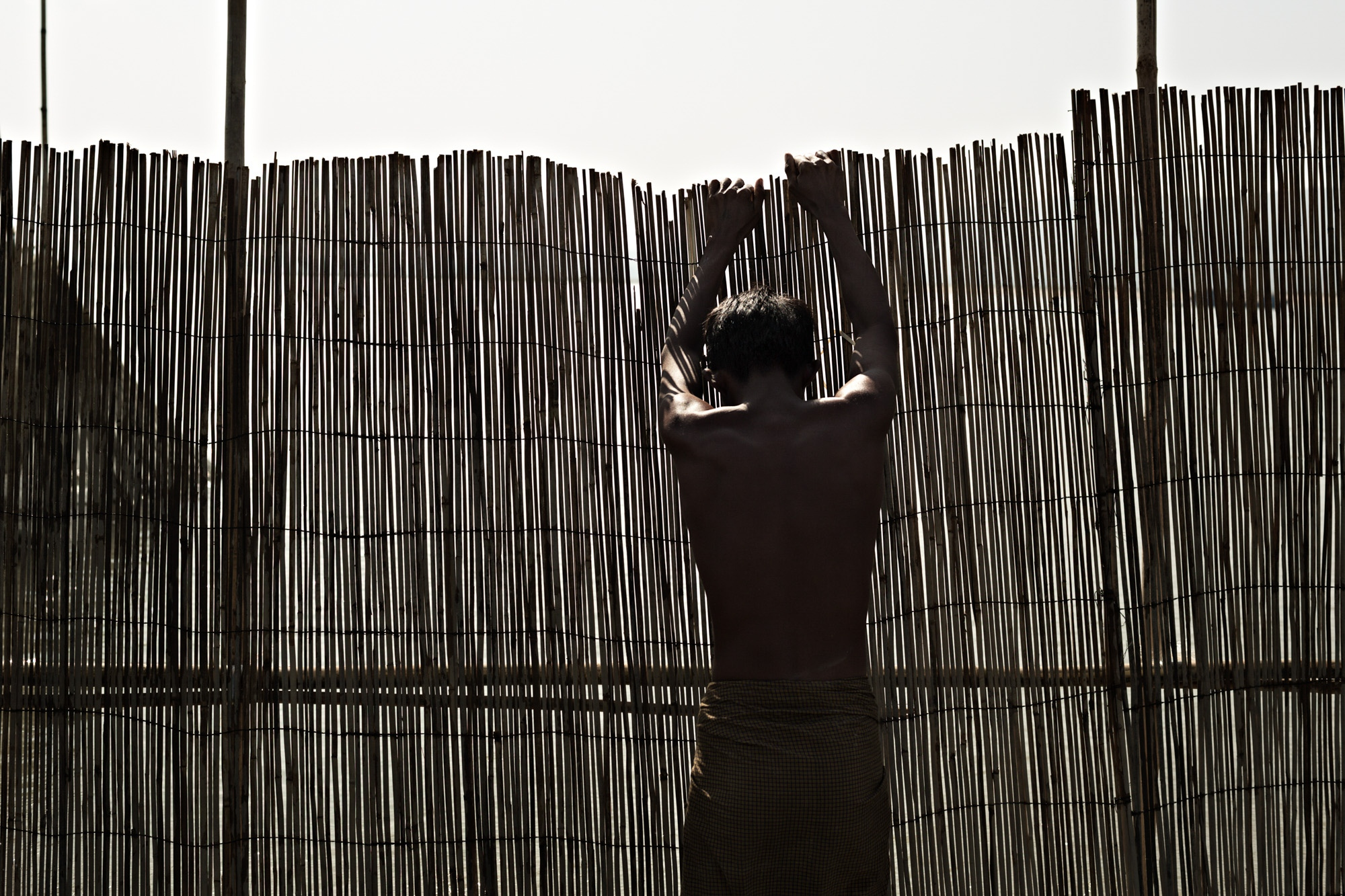 A fisherman puts up a bamboo fence on the Irrawaddy River that will funnel fish into waiting net.