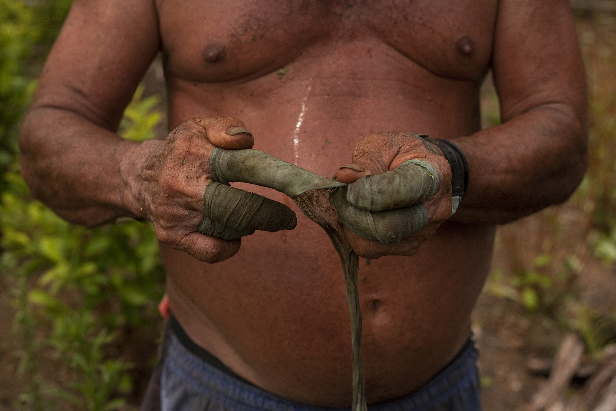 Otto Felix Forero collects coca leaves on a farm located within the Nukak National Nature Reserve, in Guaviare, Colombia. Otto has been doing this work for more than 20 years and has thus brought his family forward. The raspachines protect their hands with mosquito net fabrics that entangle their fingers.
