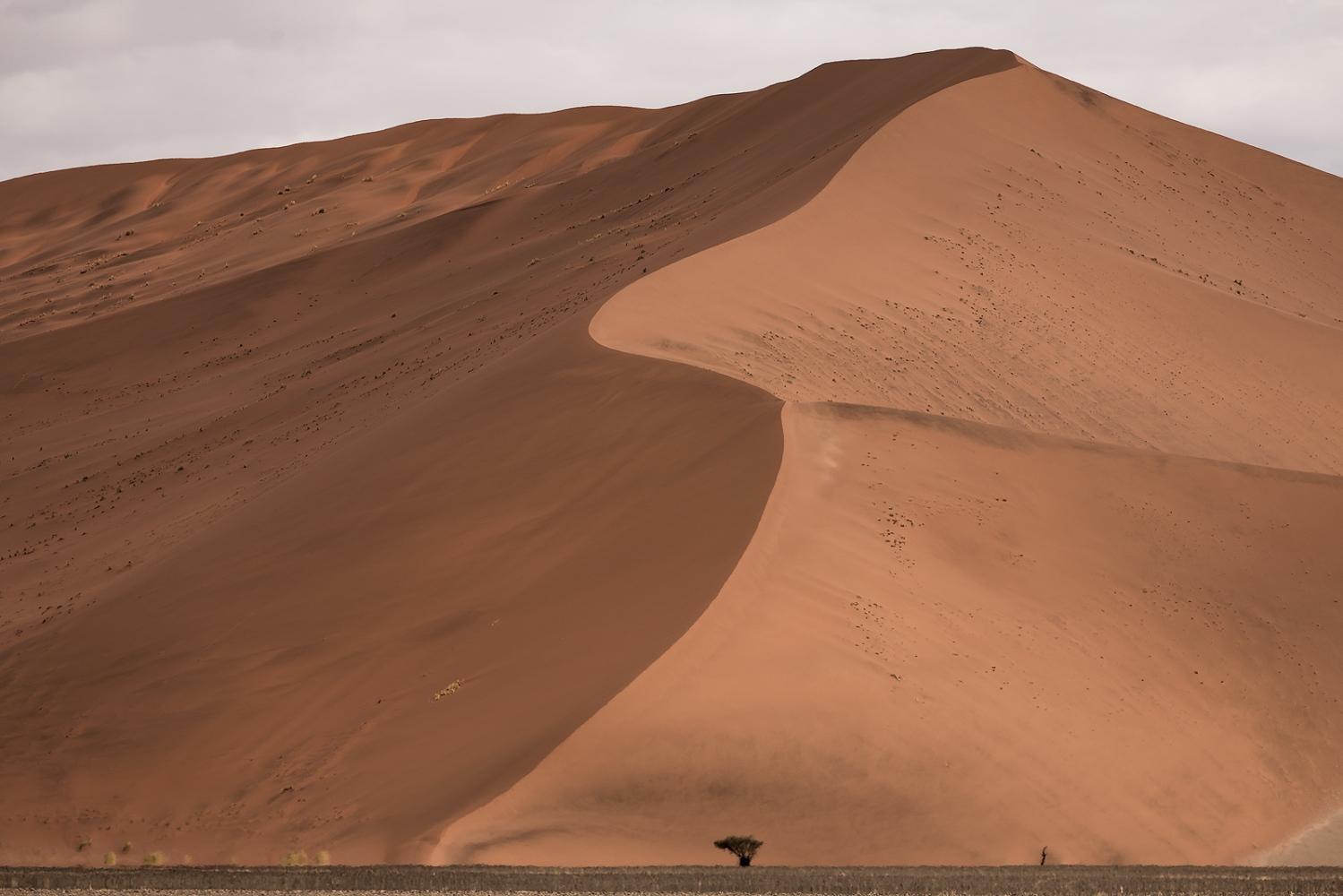 Dunas del desierto de Nambib. Namibia