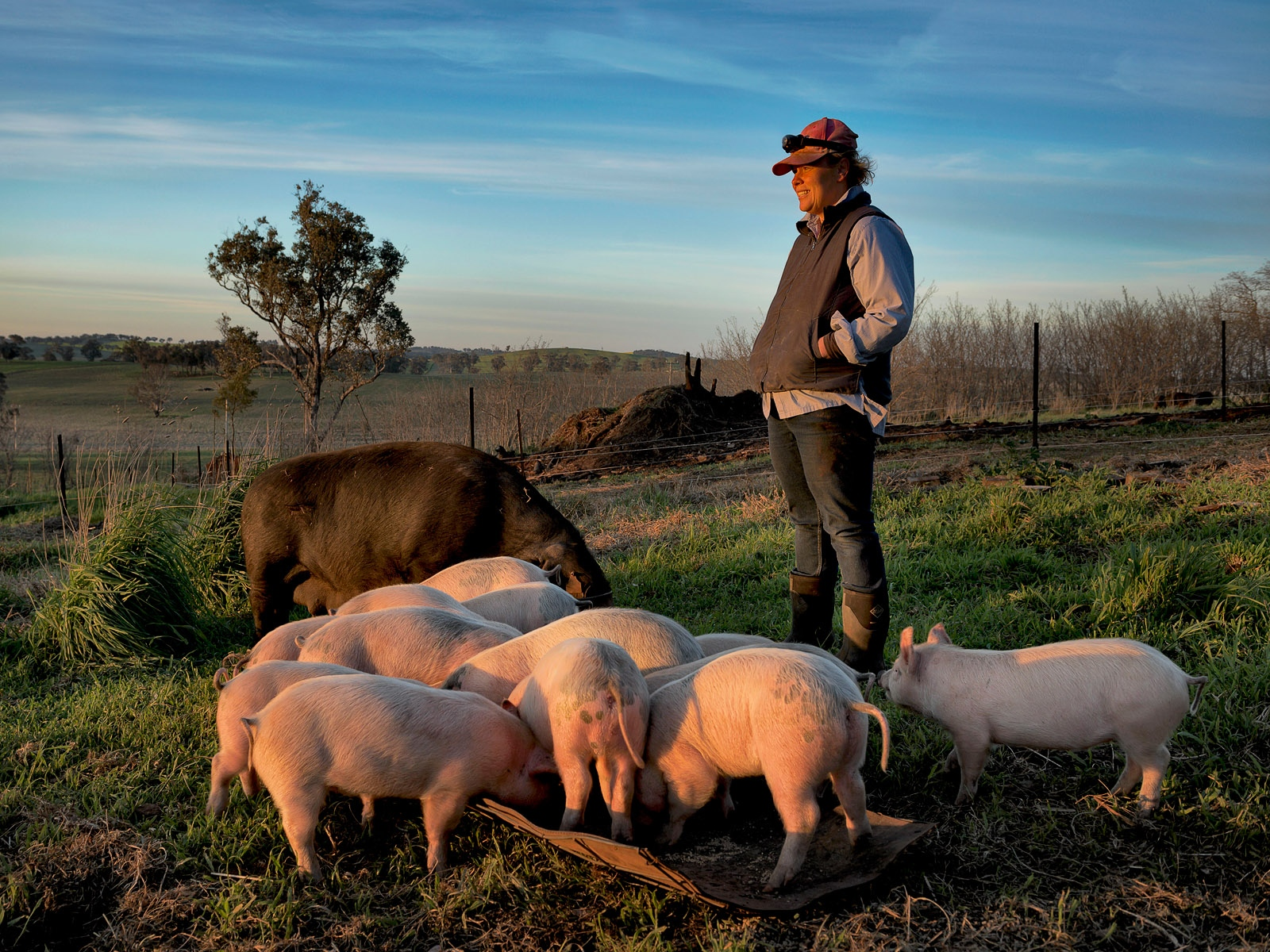Ali Betts, 'Muddy Pigs' farmer