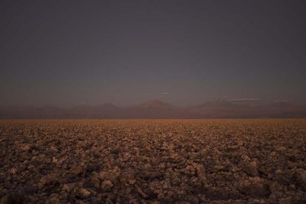 Salt field. Atacama Desert. 2016