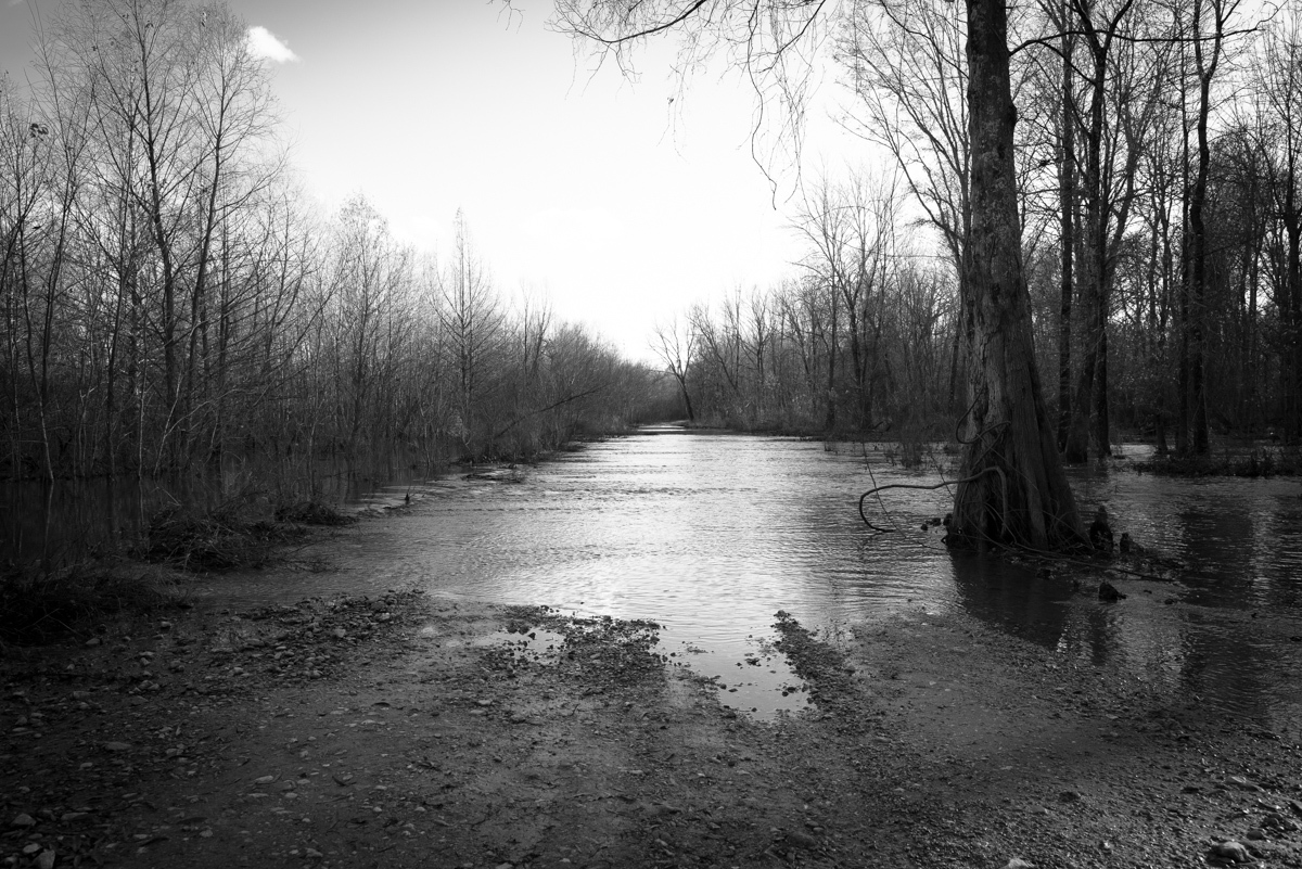 """Marshall County, MS. 12/2/2015. Before the construction of the Sardis Dam, this section of the Holly Springs National Forest was a mixture of dense forest and swamp. According to the great-grandchild of a former Klansman, somewhere between 1950 and 1960, the Klan had used the remote location to """"whoop"""" blacks that got out of line,"""" and as was told to me - """"to dump a nigger,"""" which to his knowledge was never reported missing. Some of the older locals referred to this area as """"Nigger Bottom,"""" because of the black man the Klan """"threw down deep into the swamp."""" I was taken to this old carriage trail where the Klan supposedly discarded the body not too far away."""