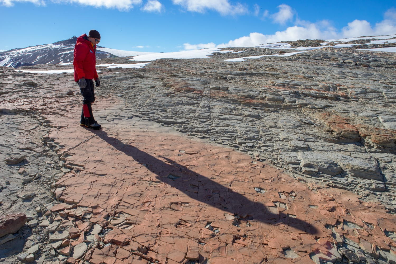 Dr. Erik Gulbranson at Collingson ridge looking at some 250 million year old mud cracks. December 2017.